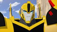 TF RiD Ausgetrickst Bumblebee