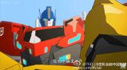 Optimus and Bee