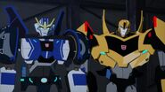 More than meets the eye Bee Strongarm happy