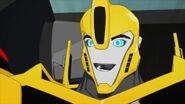 W.W.O.D.? Bee smile