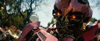 Dotm-laserbeak-film-pink.jpg