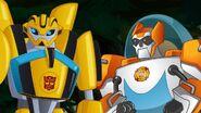 Bumblebee und Blades (1. Staffel)
