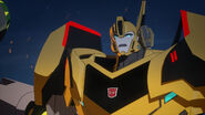 TF RiD Suspended Bumblebee 2