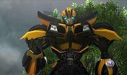 Bumblebee new paint