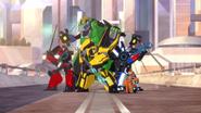 Team Bumble Bee
