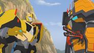 Bee & Drift