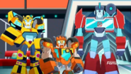 Wedge, Bumblebee and Perceptor