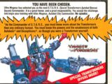 Pack-in flyer