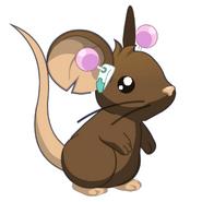 Saiki ears