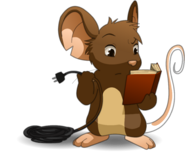 Mouse book