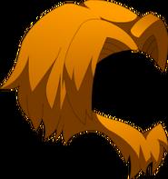 Crinière de Mufasa