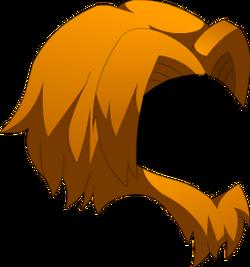 Crinière de Mufasa.png
