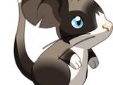 Fourrure de Grumpy Cat
