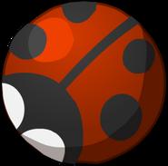 Shop-ball5