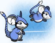 Bluejaymouse