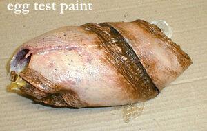 Eggpaint.jpg