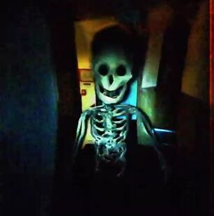 Bonesworth In a Room But His Funtime Face Was Close