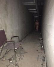 Screenshot 2020-04-14 Trevor Henderson ( trevorhenderson) • Instagram photos and videos.png