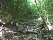 Go-Wanderung-Mai-20122