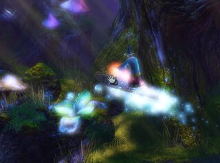 Wizard surfing.jpg