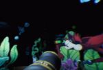 Pirate Ride Beta-Underwater1