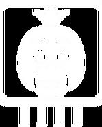 CPU-Chica-Icon