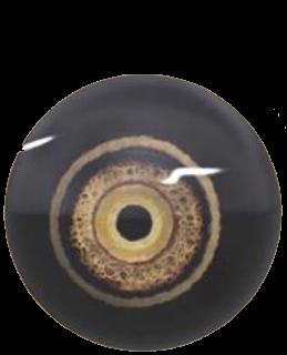 Eye of Angor Rot