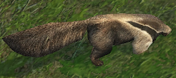 T3-Anteater.png