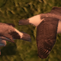 Fauna List (Tropico 3)