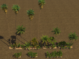 Trees (Tropico 3)