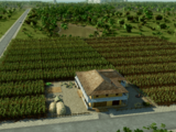 Plantation (Tropico 6)