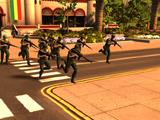 Militia Squad