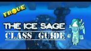 Trove™ - Ice Sage Class Guide