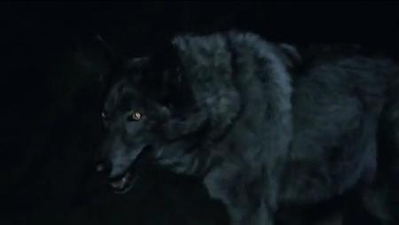 Gallery:Werewolf