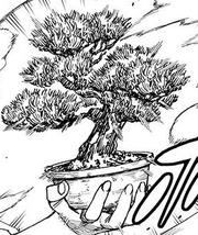 Taroumatsu object form.png