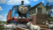 Thomas'Shortcut23