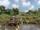 Callan Pond