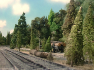 Henry'sForest8