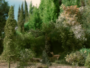 Henry'sForest15