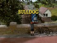 BulldogItaliantitlecard