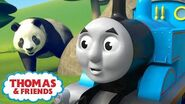 Thomas & Percy Learn What Food Animals Eat