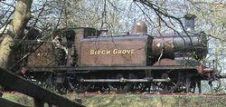 BirchGrove78.jpg