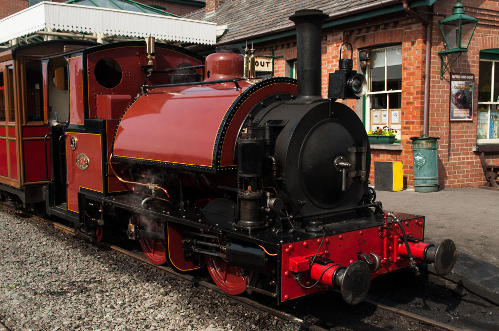 Sir Haydn