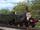 Steam Team (East6Cod) Version