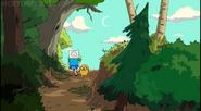 Finn e jake floresta
