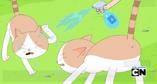 Guerra de gatos