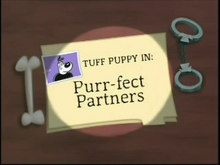 Purr-fect Partners/Images