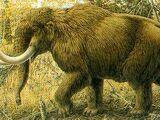 Mastodonty