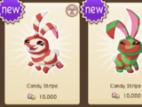 Candy Stripe Bunny