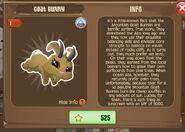 Goat Bunny 2 (Info)